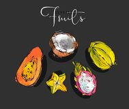 Hand drawn vector graphic abstract artistic exotic fruits illustrations collection set with coconut,papaya,dragon fruit. And carambola isolated on black Royalty Free Stock Photos