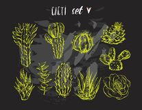 Hand drawn vector graphic creative succulent,cactus and plants collection set isolated on black background.Unique. Unusual hipster trendy design.Hand made vector illustration