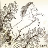 Hand drawn vector horse in vintage style Stock Photography
