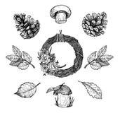Hand drawn vector illustration - Autumn. Design elements Stock Photo