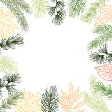 Hand drawn vector illustration - Autumn frame. Forest Spruce bra Stock Images