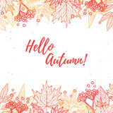 Hand drawn vector illustration. Background with Fall leaves and Stock Photos