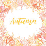 Hand drawn vector illustration. Background with Fall leaves and Royalty Free Stock Photo