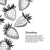 Hand-drawn vector illustration. Card or banner with strawberry. Royalty Free Stock Photography