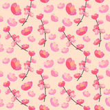 Hand drawn vector illustration. Cherry blossom seamless flowers Royalty Free Stock Image