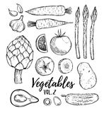 Hand drawn vector illustration - collection of vegetables vol.2 vector illustration