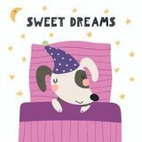 Cute sleeping dog. Hand drawn vector illustration of a cute funny sleeping dog in a nightcap, with pillow, blanket, lettering Sweet dreams. Isolated objects Stock Photography