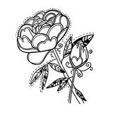 Hand drawn vector illustration. Decorative flower. Line art.  Stock Photos