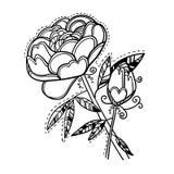 Hand drawn vector illustration. Decorative flower. Line art Stock Photos