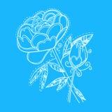 Hand drawn vector illustration. Decorative flower. Line art Stock Images