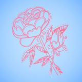 Hand drawn vector illustration. Decorative flower. Line art.  Royalty Free Stock Image