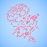 Hand drawn vector illustration. Decorative flower. Line art Royalty Free Stock Image