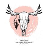 Hand drawn vector illustration - deer skull with feathers. Stock Photography