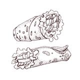 Hand drawn vector illustration of doner kebab. Roll, chicken roll, fast food, kebab, shawarma. Cartoon style stock illustration
