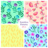 Hand drawn vector illustration. 4 elegant seamless patterns. With flowers. (Cherry pattern, pattern with leaves, pattern with flowers and pattern with Royalty Free Stock Photography