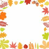 Autumn frame with leaves, berries stock illustration