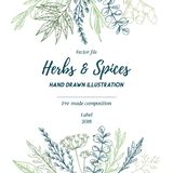 Hand drawn vector illustration. Frame with herbs and spices sag. E, tarragon, ginger. Herbal pre-made composition. Perfect for menu, cards, prints, packing royalty free illustration
