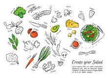 Hand drawn vector illustration of fresh salad with vegetables, c Royalty Free Stock Images