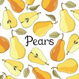 Vector set with ripe pears on white background with lettering. Hand drawn vector illustration with fruits Stock Photography