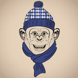 Hand Drawn Vector Illustration of Funny Monkey  in Knitted Scarf and Hat. Stock Photo