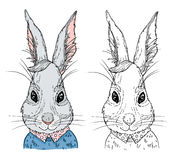 Hand-drawn vector illustration. Hipster bunny in knitted sweater Stock Images