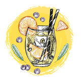 Hand drawn vector illustration - Lemonade with blueberry, mint a Stock Photography