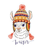 Hand drawn vector illustration with portrait of the alpaca in a knitted ornamental cap. Print for t-shirt design or greeting card Stock Photo