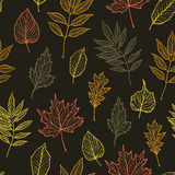 Hand drawn vector illustration. Seamless pattern with fall leaves Stock Photos