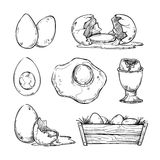 Hand drawn vector illustration - Set of eggs. Royalty Free Stock Photography