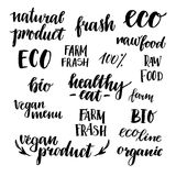 Hand drawn vector illustration - Set of organic food labels. Org. Anic and vegan food. Perfect for cards, quotes, stickers, blogs, posters and more Royalty Free Stock Images