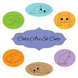 Hand Drawn Vector illustration with silhouettes of cute cats. On color background Stock Image