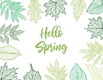 Hand drawn vector illustration. Spring frame with green leaves, stock illustration