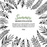 Hand drawn vector illustration. Square frame with leaves and bra Stock Photography