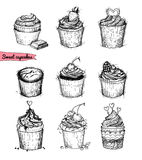 Hand-drawn vector illustration - Sweet cupcakes. Line art. Isolated on white background vector illustration