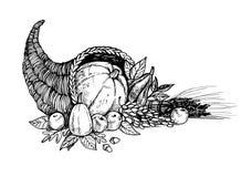 Hand drawn vector illustration - Thanksgiving day. Cornucopia.  Stock Photos