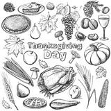 Hand drawn vector illustration - Thanksgiving day Stock Image