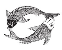 Hand drawn vector illustration of two Koi fishes (Japanese carp). Symbol of love, friendship and prosperity. Black and white image. Can be used for tattoo Stock Photos