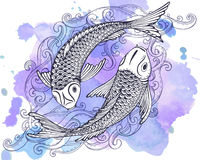 Hand drawn vector illustration of two Koi fishes (Japanese carp) Stock Image