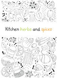Kitchen herbs and spices doodle background Stock Images