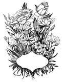 Hand drawn vector illustration - wedding invitation. Vintage ca. Rd with flowers royalty free illustration