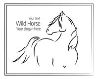 Hand drawn vector illustration of wild horse Stock Images