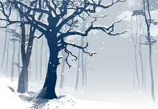 Forest in winter. Hand drawn vector illustration of a woodland scenery with grandiose oak tree and ferns in snowfall Royalty Free Stock Photography