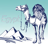 Hand Drawn Vector Illustration. World Famous Landmark Series: Egypt, Pyramids Royalty Free Stock Photos
