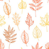 Hand drawn vector illustrations. Seamless pattern with leaves. F. Orest background Stock Photos