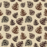 Hand drawn vector illustrations. Seamless pattern with pine cones Stock Image