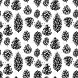 Hand drawn vector illustrations. Seamless pattern with pine cones Royalty Free Stock Photo