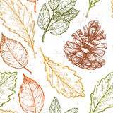 Hand drawn vector illustrations. Seamless pattern with with pine cones Stock Photo