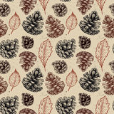 Hand drawn vector illustrations. Seamless pattern with pine cones. Hand drawn vector illustrations. Seamless pattern with with pine cones and leaves. Forest Stock Photography