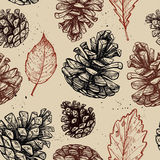 Hand drawn vector illustrations. Seamless pattern. With pine cones and leaves. Forest background Royalty Free Stock Photo