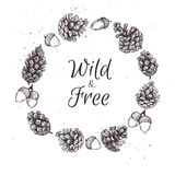 Hand drawn vector illustrations. Wreath with pine cones. Forest. Vintage elements Stock Photo